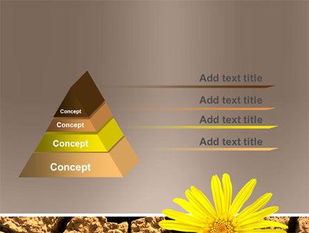 Desert Flower Free PowerPoint Template, Slide 4, 04901, Nature & Environment — PoweredTemplate.com