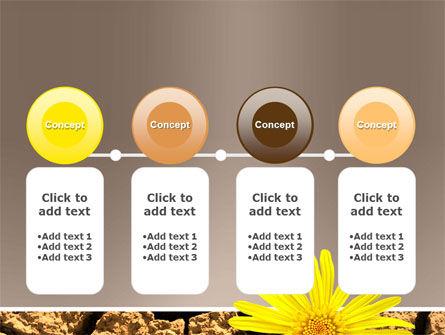 Desert Flower Free PowerPoint Template Slide 5