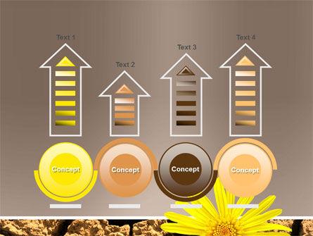 Desert Flower Free PowerPoint Template Slide 7