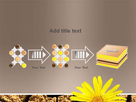 Desert Flower Free PowerPoint Template Slide 9