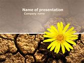 Nature & Environment: Woestijn Bloem Gratis Powerpoint Template #04901