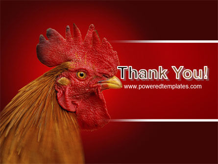 Rooster PowerPoint Template Slide 20