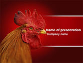 Agriculture: Rooster PowerPoint Template #04937
