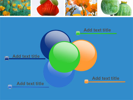 Poppy PowerPoint Template Slide 10