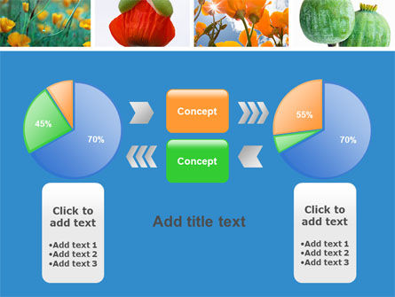 Poppy PowerPoint Template Slide 11