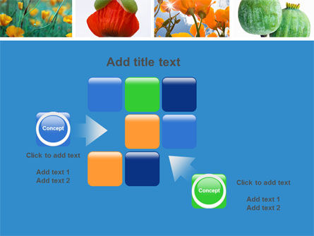 Poppy PowerPoint Template Slide 16