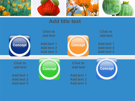 Poppy PowerPoint Template Slide 19