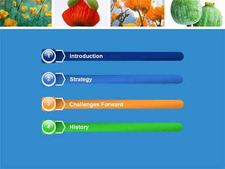Poppy PowerPoint Template, Slide 3, 04965, Nature & Environment — PoweredTemplate.com