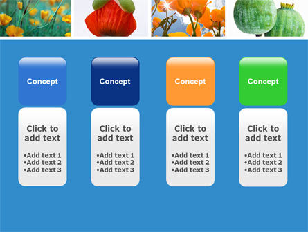 Poppy PowerPoint Template Slide 5
