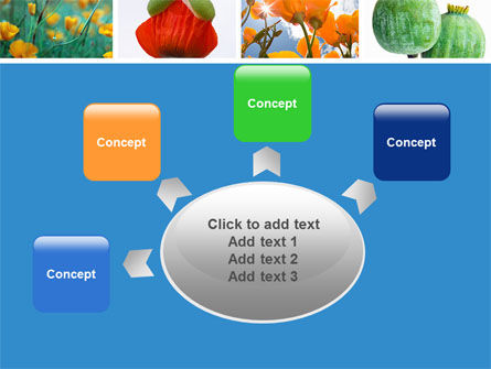 Poppy PowerPoint Template Slide 7