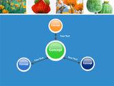 Poppy PowerPoint Template#14