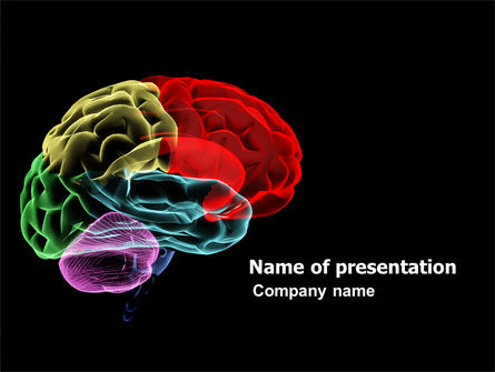Brain Centers PowerPoint Template, 04990, Medical — PoweredTemplate.com