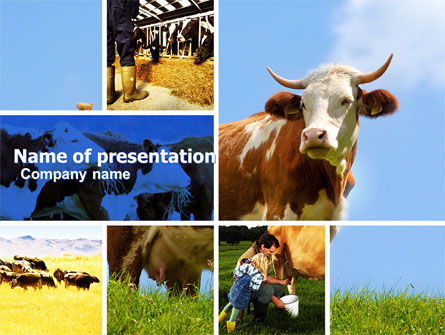 Cow powerpoint template backgrounds 04991 poweredtemplate cow powerpoint template toneelgroepblik Image collections