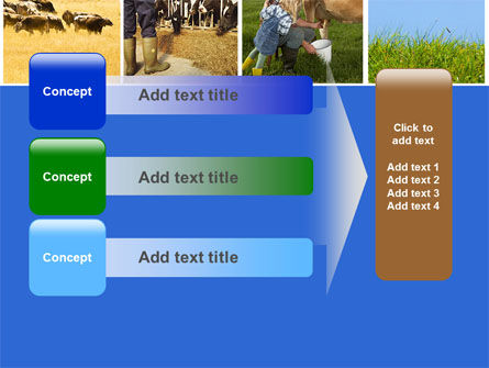 Cow PowerPoint Template Slide 12