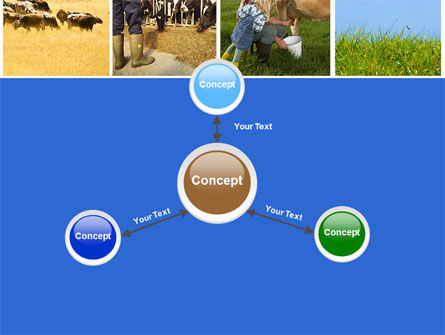 Cow PowerPoint Template Slide 14