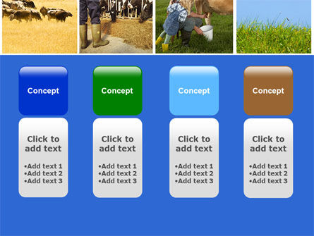 Cow PowerPoint Template Slide 5