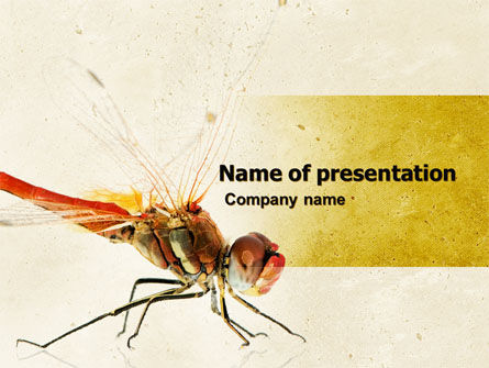 Animals and Pets: Dragonfly PowerPoint Template #04999