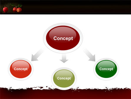 Red Apples PowerPoint Template, Slide 4, 05037, Agriculture — PoweredTemplate.com