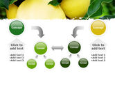 Yellow Apple PowerPoint Template#19