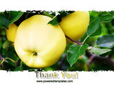 Yellow Apple PowerPoint Template#20