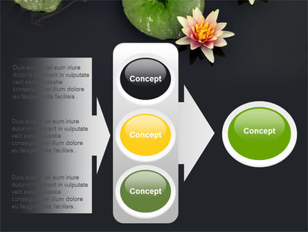 Water Lily PowerPoint Template Slide 11