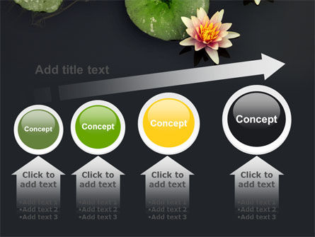 Water Lily PowerPoint Template Slide 13
