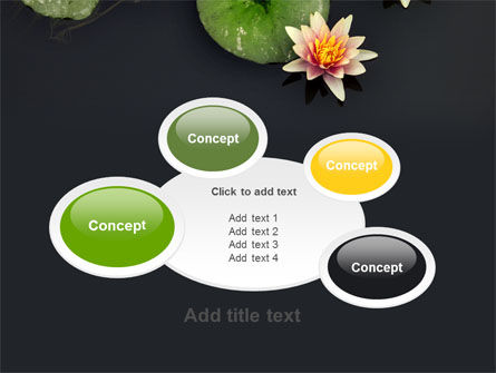 Water Lily PowerPoint Template Slide 16