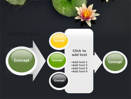 Water Lily PowerPoint Template Slide 17