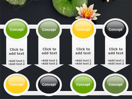 Water Lily PowerPoint Template Slide 18