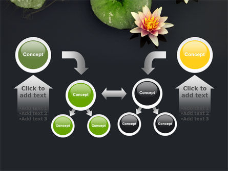 Water Lily PowerPoint Template Slide 19