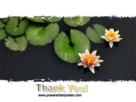 Water Lily PowerPoint Template Slide 20