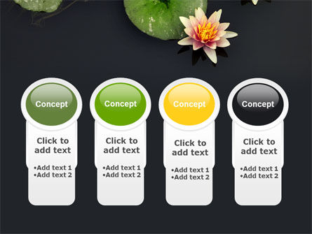 Water Lily PowerPoint Template Slide 5