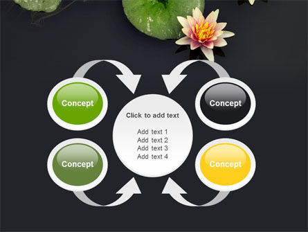 Water Lily PowerPoint Template Slide 6