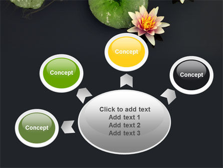 Water Lily PowerPoint Template Slide 7