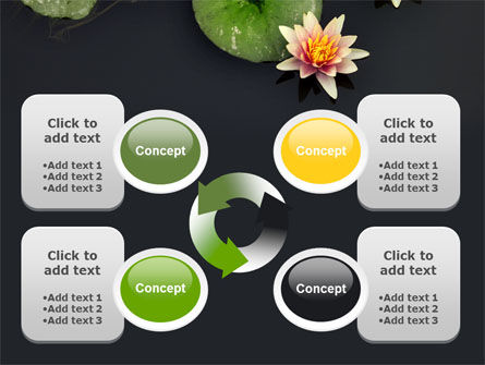 Water Lily PowerPoint Template Slide 9