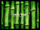 Green Bamboo PowerPoint Template#20