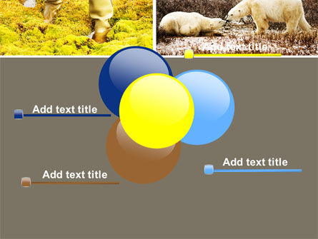 Tundra PowerPoint Template Slide 10