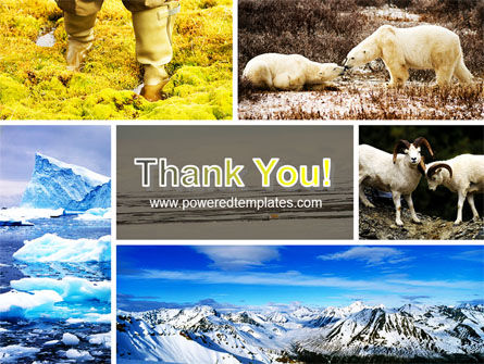 Tundra PowerPoint Template Slide 20