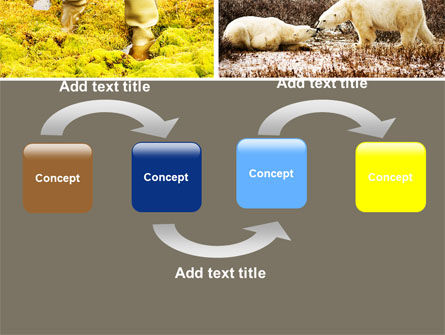 Tundra PowerPoint Template, Slide 4, 05154, Nature & Environment — PoweredTemplate.com
