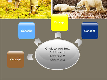 Tundra PowerPoint Template Slide 7