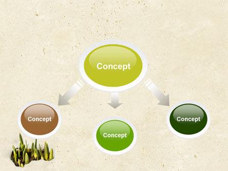 Snowdrop PowerPoint Template, Slide 4, 05170, Nature & Environment — PoweredTemplate.com