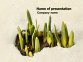 Nature & Environment: Snowdrop PowerPoint Template #05170