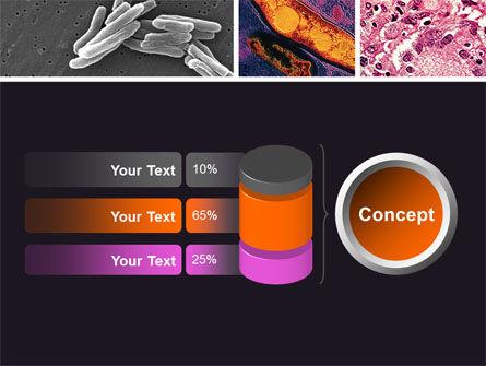 Tuberculosis PowerPoint Template Slide 11