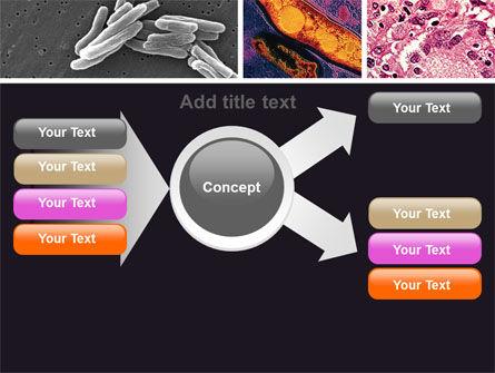 Tuberculosis PowerPoint Template Slide 14