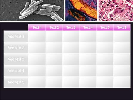Tuberculosis PowerPoint Template Slide 15
