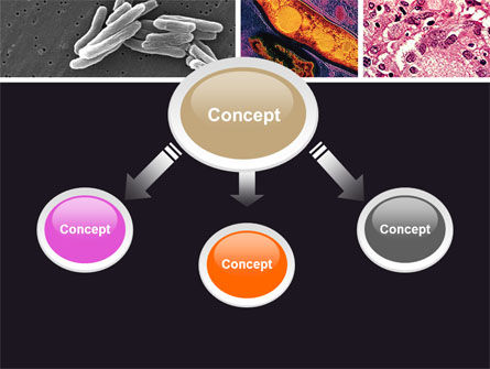 Tuberculosis PowerPoint Template, Slide 4, 05171, Medical — PoweredTemplate.com