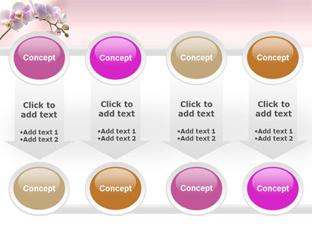 Orchid PowerPoint Template Slide 18