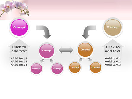 Orchid PowerPoint Template Slide 19