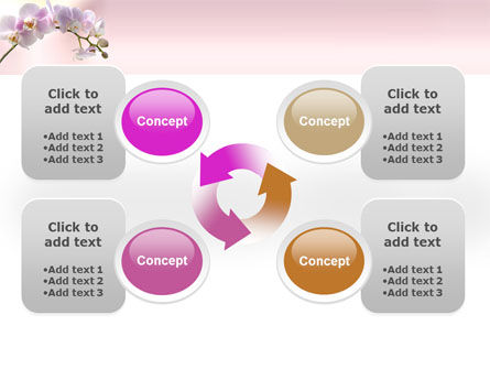 Orchid PowerPoint Template Slide 9