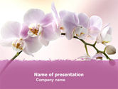 Orchid PowerPoint Template#1